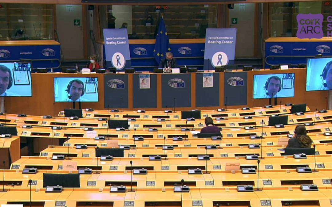 Professor Seamus O'Reilly speaks to the European Parliament's Special Committee on Beating Cancer for World Cancer Day